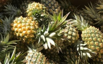 The perfect Australia Day is just a pineapple throw away