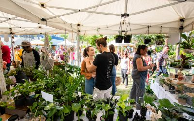 The Plant Market blooms at West Village once again!